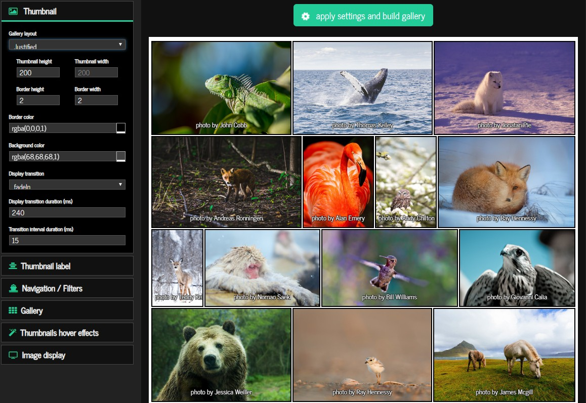 nanogallery2 - a modern photo / video gallery and lightbox